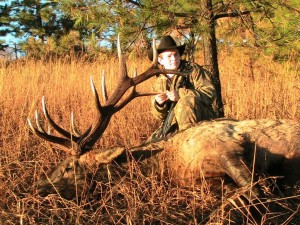 Idaho elk outfitter