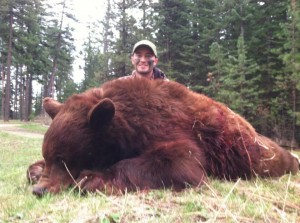 Idaho Black Bear Hunts With High Success On Color Phase