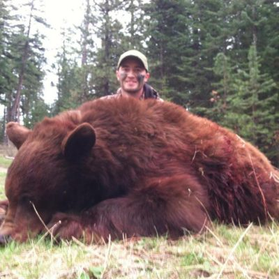 Idaho Black Bear Hunting Guide