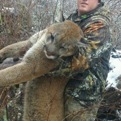 Idaho Mountain Lion Oufitter