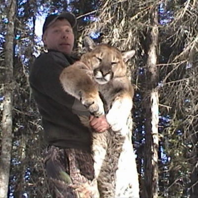 The finest cougar hunts Idaho has to offer