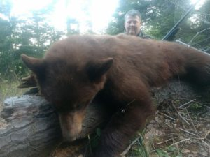 Spring bear hunt Idaho