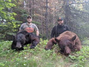 Idaho Bear Hunting Double